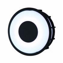 LARTE Luce TELMA свет-к настенно-потолочный, black L78056.31