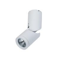 Потолочный светильник MAYTONI C019CW-01W